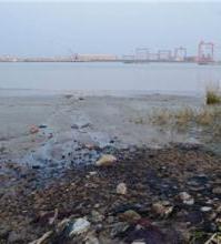 武漢工業固廢處理